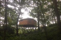 tree_house_4